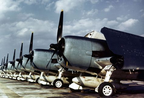 Grumman F6F -3 Hellcat Fighters.  The flight line at a Naval air station, circa 1943-44. U.S. Navy Photograph, now in the collections of the National Archives. ~ BFD