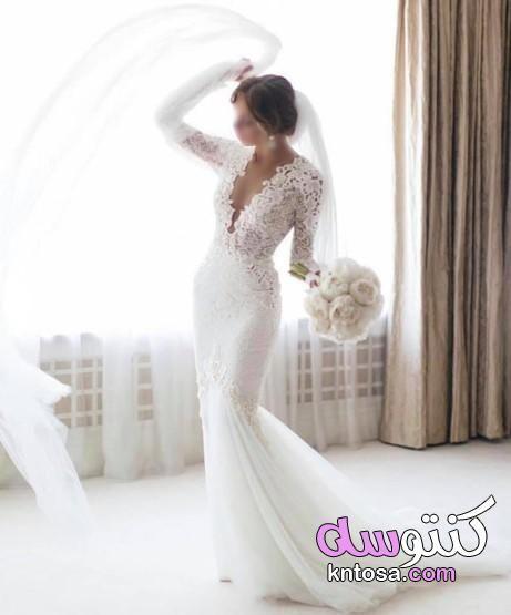 فساتين اعراس فساتين زفاف 2020 من مجموعة المصممة Berta Balilti Kntosa Com 28 19 156 Column Wedding Dress Wedding Dresses Wedding Dresses Lace
