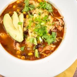Crock Pot Salsa Chicken Recipe 0 Points Laaloosh Recipe Chicken Enchilada Soup Recipes Enchilada Soup Recipe Enchilada Soup