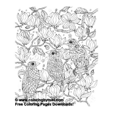 Zentangle Three Birds Coloring Page 421 Freeprintable Coloring