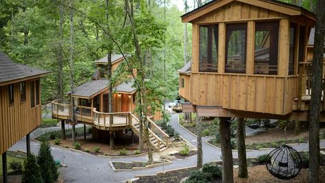 Treehouse Grove in Gatlinburg lets guests rent a luxury treehouses