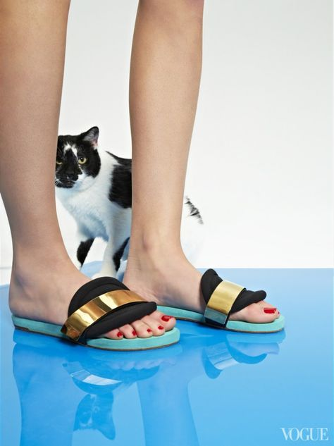 March 8 - When supersweet Florence first arrived at the Bideawee shelter she had a broken jaw. She approves of the slip-free rubber and neoprene slides for pedals and pool parties.