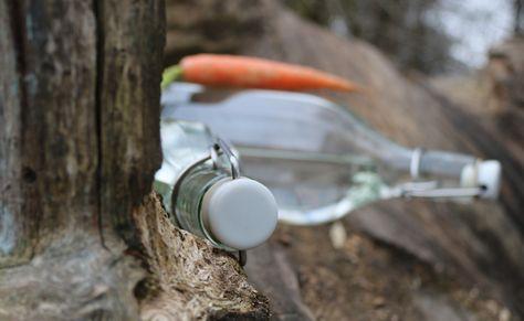 Denkmit Hygiene Spuler Wasche Desinfektion Parfumfrei 15 Wl