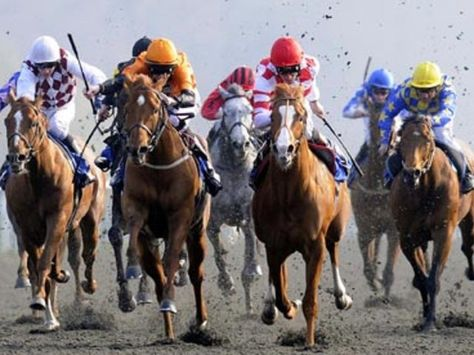 Horse Racing Betting Systems. Horse Racing Handicapping ...