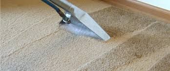 Carpet Steam Cleaning Blackburn North How To Clean Carpet Carpet Cleaning Service Professional Carpet Cleaning