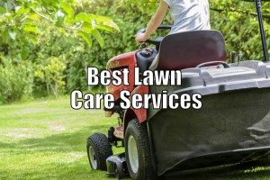 Services Directory Helps You Get Weekends Back Lawn Care Lawn