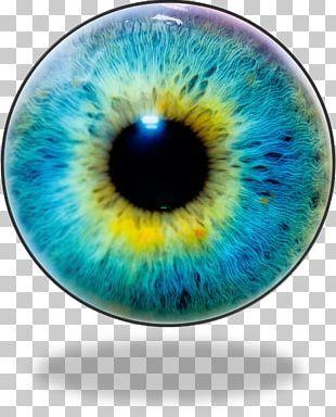 Eye Iris Photography Png Clipart Blue Blue Eye Circle Closeup Computer Icons Free Png Download Iris Recognition Human Eye Iris