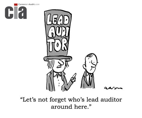 Audit Cartoon  Lead Auditor  Auditing