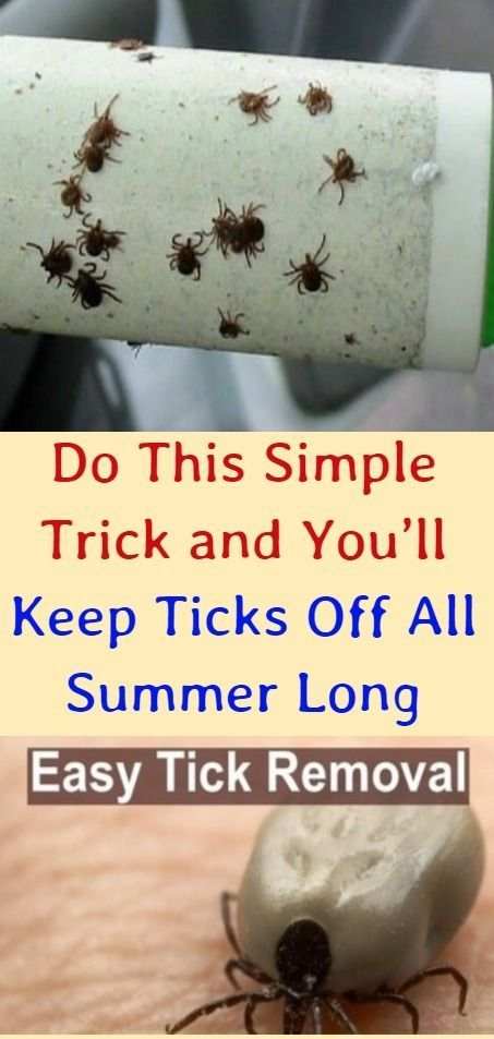 Do This Simple Trick And You Ll Keep Ticks Off All Summer Long