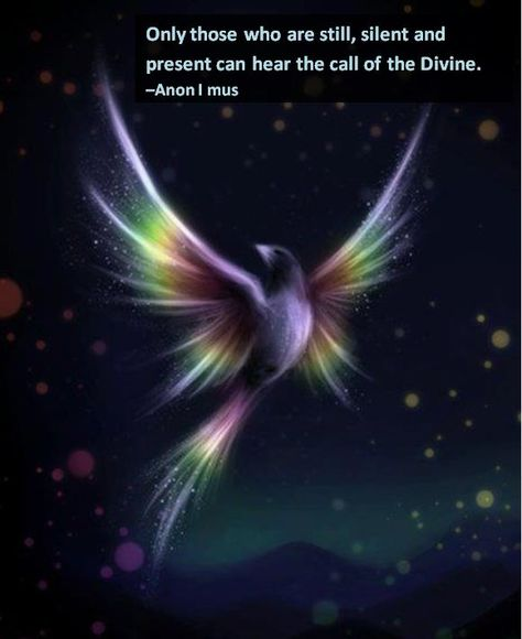 Only those who are still, silent and present can hear the call of the Divine. -Anon I mus