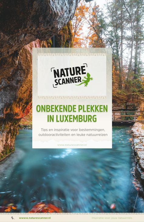 8 ideeën over Natuur in Luxemburg in 2021 | luxemburg ...