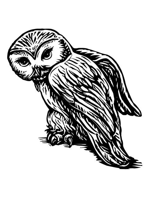 Hedwig Harry Potter Coloring Pages Harry Potter Stencils Harry