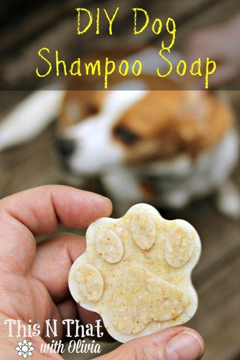 DIY Dog Oatmeal Anti-Itch and Flea/Tick Repellent Shampoo Soap Bars DIY Dog Essential Oil Oatmeal Anti-Itch and Flea/Tick Repellent Shampoo Soap Bars