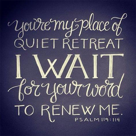 thevirtuousgirl: Psalm 119:114