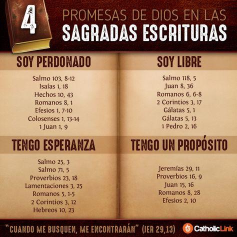 Biblioteca de Catholic-Link - Infografía: 4 promesas de Dios en la Biblia
