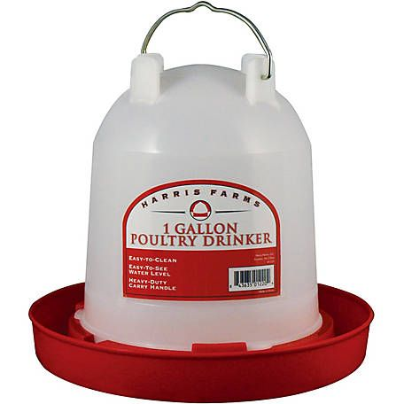 Harris Farms Poultry Drinker 5 Qt At Tractor Supply Co Poultry Chickens Backyard