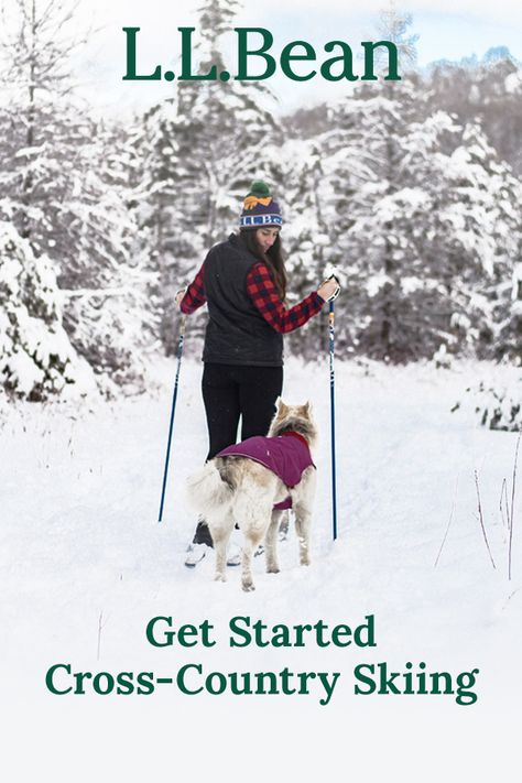Winter's here! Here's everything you need to know to get started with the fun and healthy sport of cross-country skiing.