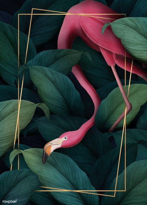 Tropical flamingo on a rectangle golden frame illustration | premium image by rawpixel.com / Aom Woraluck / eyeeyeview