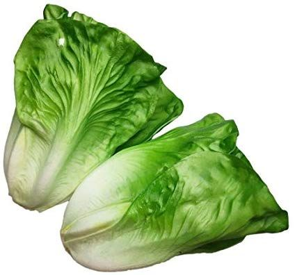 Artificial Lifelike Fake Food Vegetables Cabbage for Home Kitchen Display