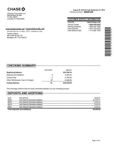 We customize Chase bank statement to your specifications