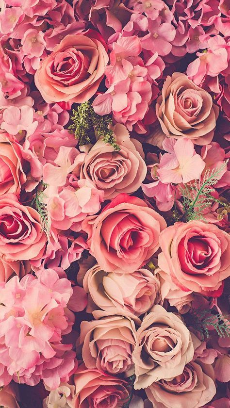 36 Ideas Flowers Pink Background Photography Floral Wallpaper Iphone Iphone Wallpaper Hipster Flower Background Iphone