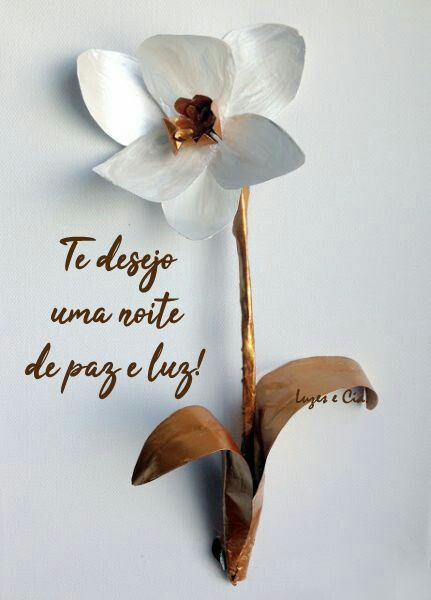 Te Desejo Uma Noite De Paz E Luz Com Imagens Cartao De Boa