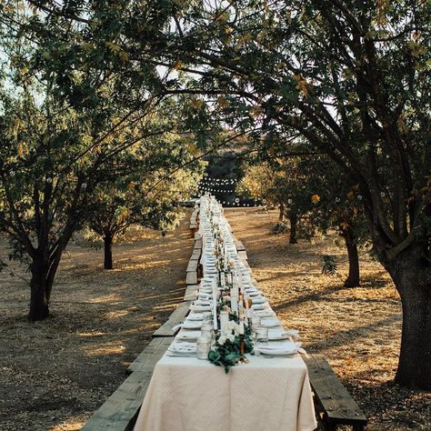10 Tips for Planning a Camping Inspired Wedding #wedding #weddingplanning #weddingtable