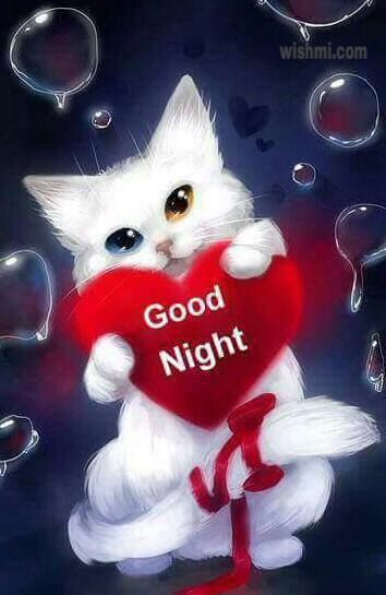 New Good Night Picture, Wallpapers Download For Whatsapp