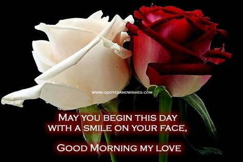 Good Morning Love Quotes | Good Morning My Love Flowers For My Wife Pinterest Morning