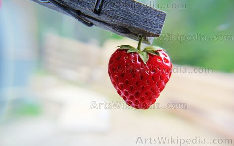 High resolution strawberry imagestrawberry like love heartvery high in quality