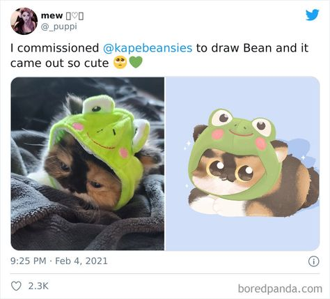 'Bib' Turns Funny Animal Pics Into Adorable Drawings And Here're 30 Of Their Cutest Works