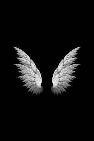 Angel Wings Simple Iphone 6 Plus Hd Wallpaper Cool Black