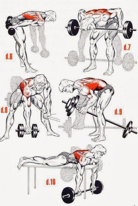 The Fitness era: HARDCORE back workout
