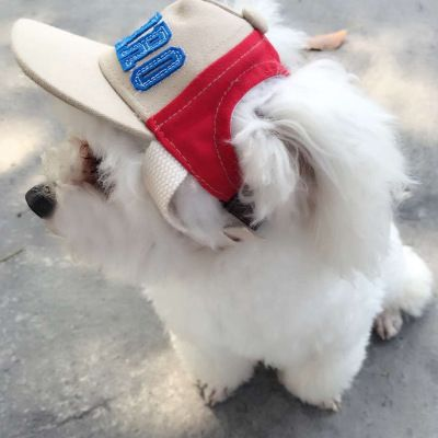 Wholesale Sunscreen Pet Hat Teddy Recreational Sun Hat Dog Baseball Cap Canvas Breathable Duck Tongue Cap Usd2 65 Pc F Dog Hat Outdoor Dog Dog Costumes Funny