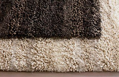 Felix Rug by Crate and Barrel.
