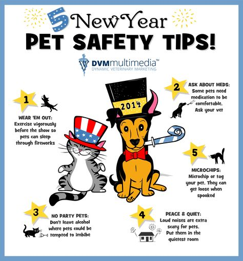 5 New Year S Pet Safety Tips Happynewyear Petsafety Pet Safety Pet Meds Dog Care Tips