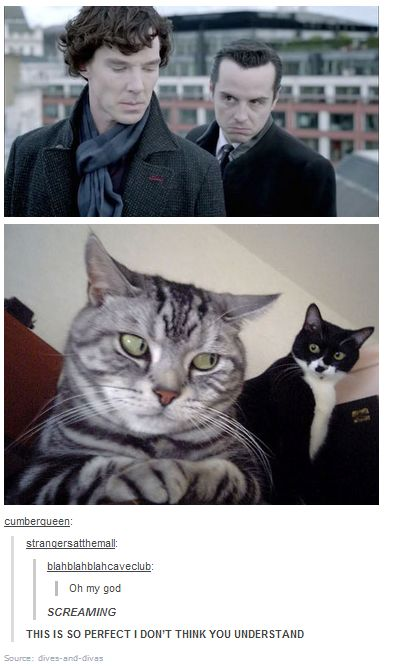 Sherlock & Moriarty. This is just too silly not to repin.