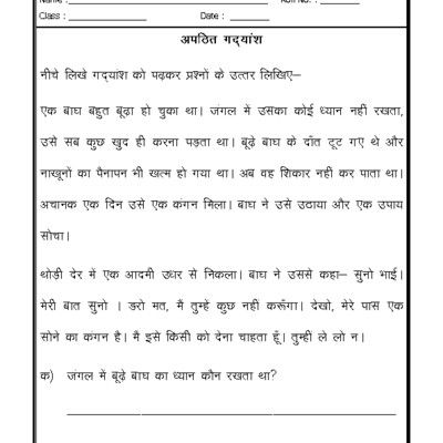 Worksheet Of Hindi Worksheet Unseen Passage 11 Unseen Passage Hindi Language Hindi Worksheets Language Worksheets Hindi Language
