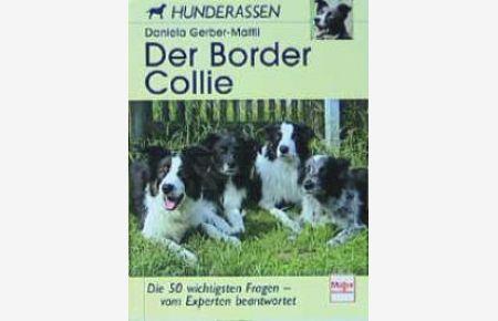 Der Border Collie Hunderassen Von Daniela Gerber Mattli Border Collie Bordercollie Sheepdog Trials Agility Wettbewerbe Schaftreiberhund Au