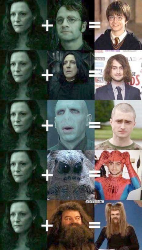 Harry Potter Characters Boggarts A Harry Potter Quiz Game Either Harry Potter Spells Book 2 From Harry Potter Puns Harry Potter Jokes Funny Harry Potter Jokes