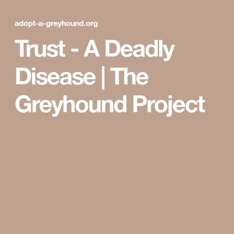 Trust A Deadly Disease The Greyhound Project Disease Greyhound Trust