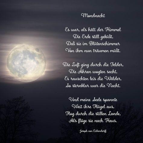 Mondnacht #Trauergedicht #ANUBIS-Tierbestattungen