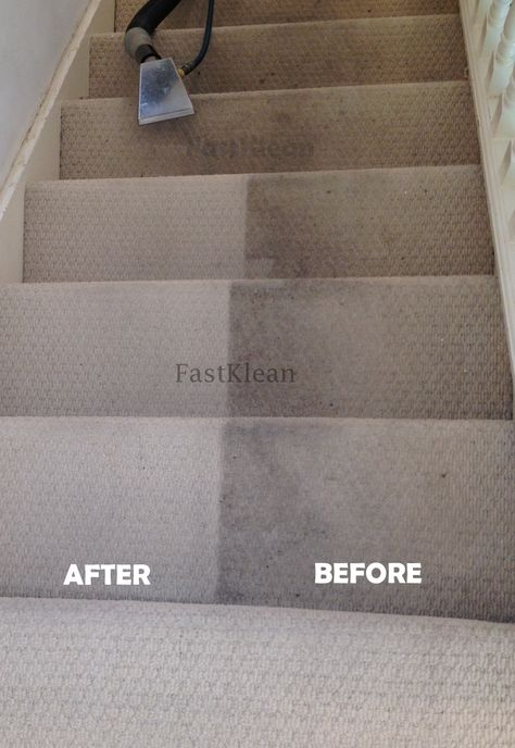How Often Do You Get Your Carpets Cleaned Arrange