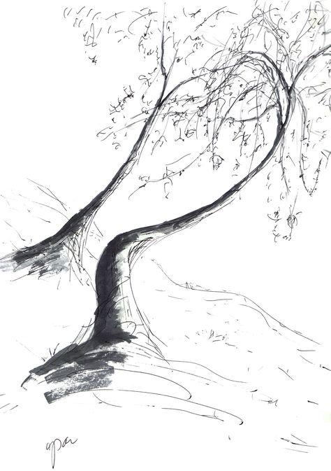 Cali Tree Sketch 5