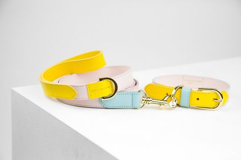 Dog Leash Isabel Pink Yellow Handmade Leather | max-bone – maxbone