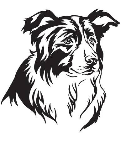 Decorative Portrait Of Dog Border Collie Vector Isolated Illustration In Black Color On White Background Border Collie Art Border Collie Collie