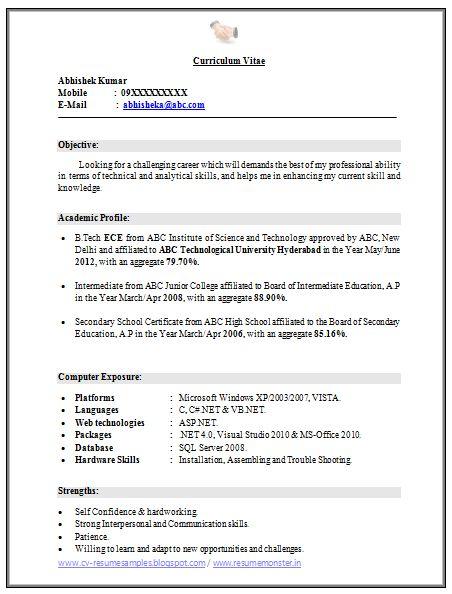 bsc chemistry fresher resume format download  birthday
