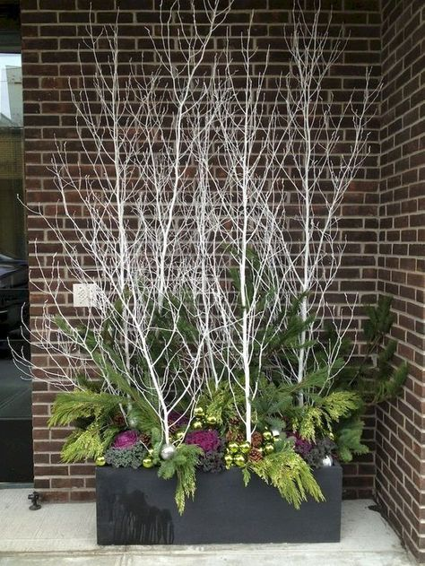 23 Winter Container Garden Ideas For 2019 - A Nest With A Yard