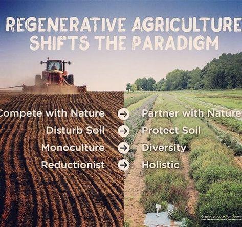 The Organic No-Till Farming Revolution; Review & Giveaway • Runamuk Acres Conservation Farm