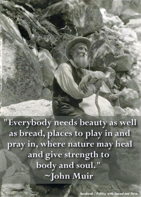 Top quotes by John Muir-https://s-media-cache-ak0.pinimg.com/474x/bb/0f/d9/bb0fd97703b587224d5a4499bd0cc90d.jpg